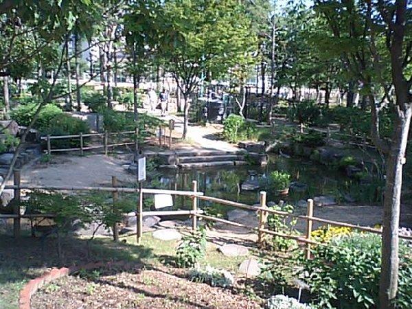 上ケ池公園(花と緑の学習園)
